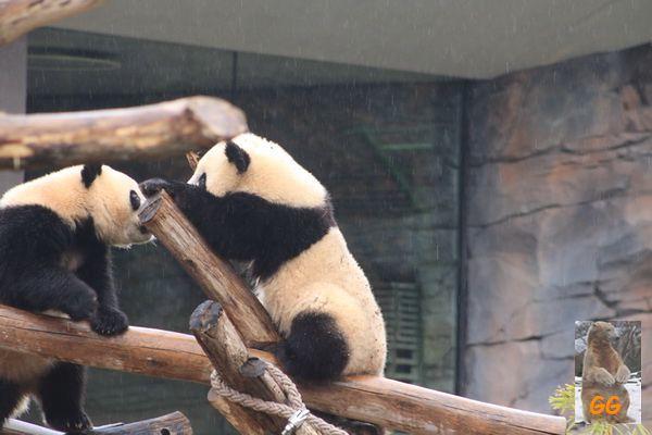 Besuch Zoo Berlin 27.03.21040