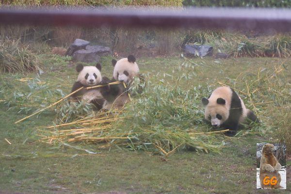Besuch Zoo Berlin 27.03.21028