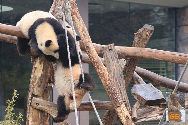 Besuch Zoo Berlin 27.03.21018