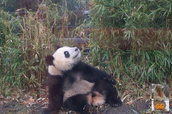 Besuch Zoo Berlin 27.03.21008