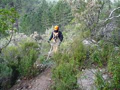 Débroussaillage sur la montée à la cascade de Piscia Cava (PR4/PR5)