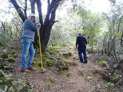 Travaux sur la montée à la cascade de Piscia Cava (PR4/PR5)