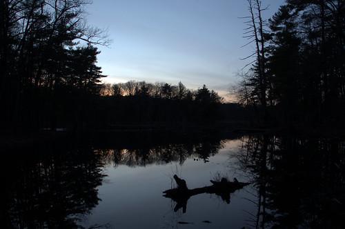 bakermeadow sunset cloud sky skyscape color light pine cone pond lake andover massachusetts cloudy water reflection tree winter landscape park silhouette dusk sunrise