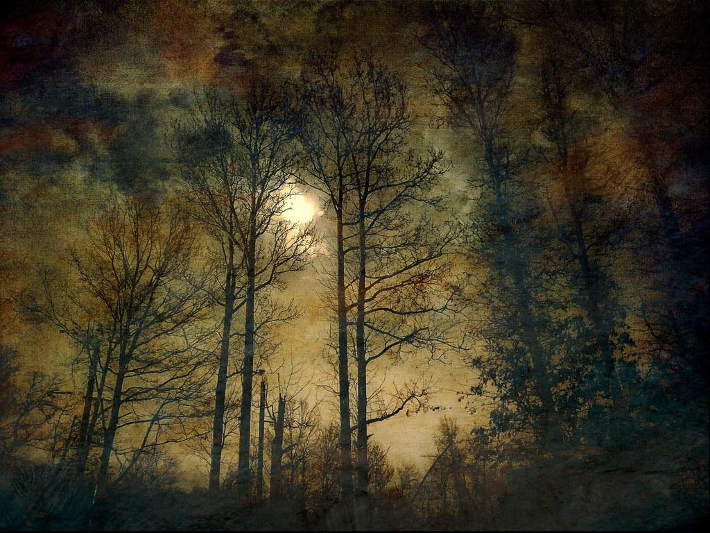 Moon Glow by Zoltan Puskas