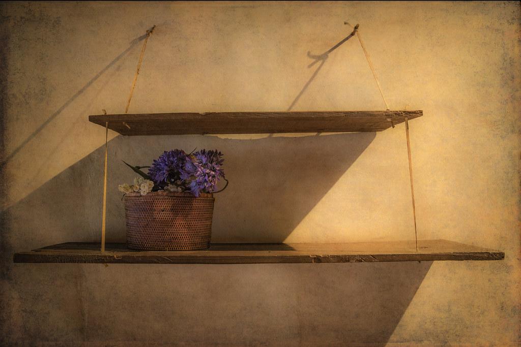 Shelves by Chris Seaton