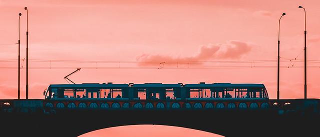 Cotton pink tram