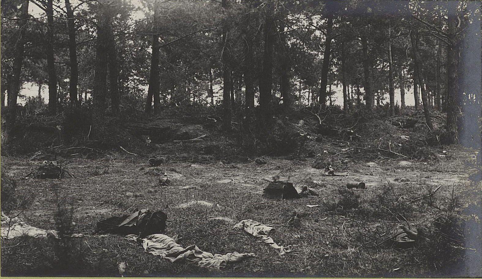 18. Австро-германские окопы, взятые между с. Высоке и Тарнавкой. Землянки в лесу
