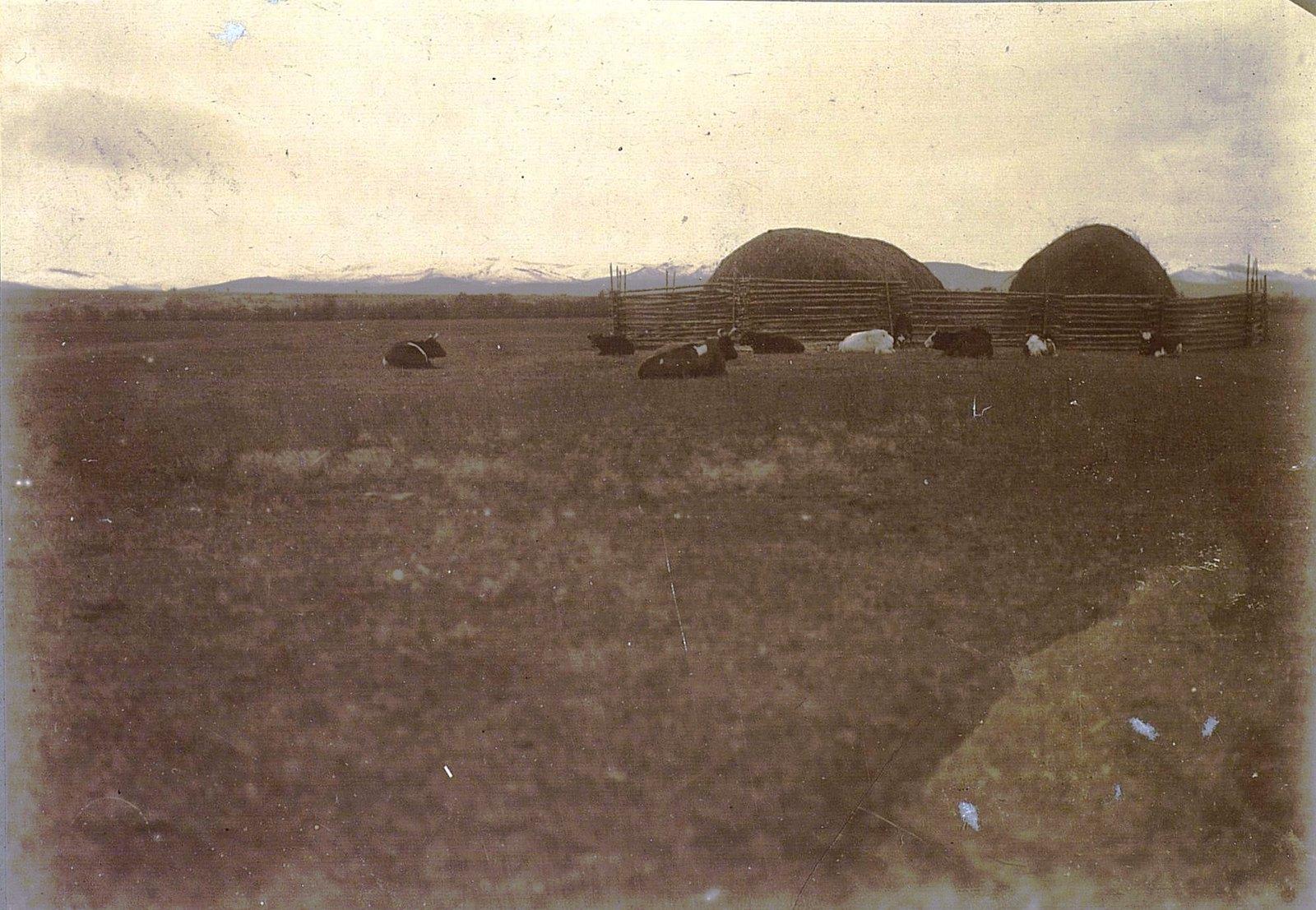 07. Усть-Кирань. Вид на дачные участки кяхтинцев