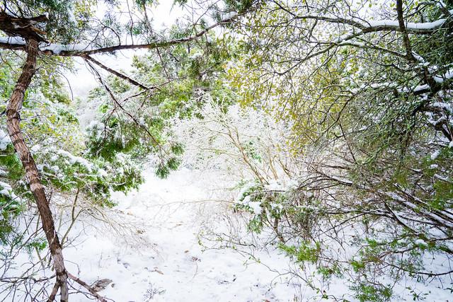 SnowStorm_007