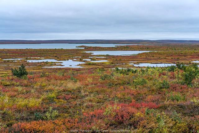 Arctic Waterworld