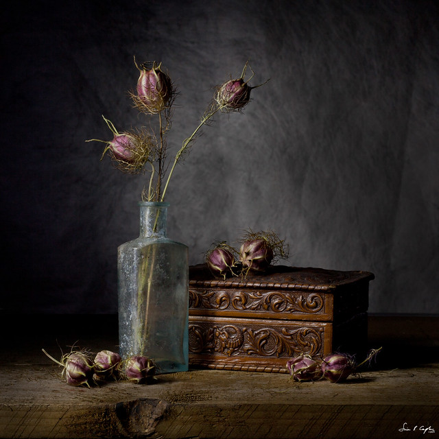Still Life with Love in a Mist and Old Box