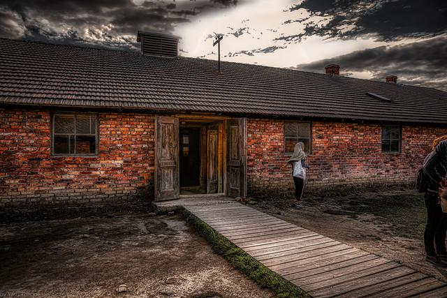 Auschwitz II-Birkenau: Special