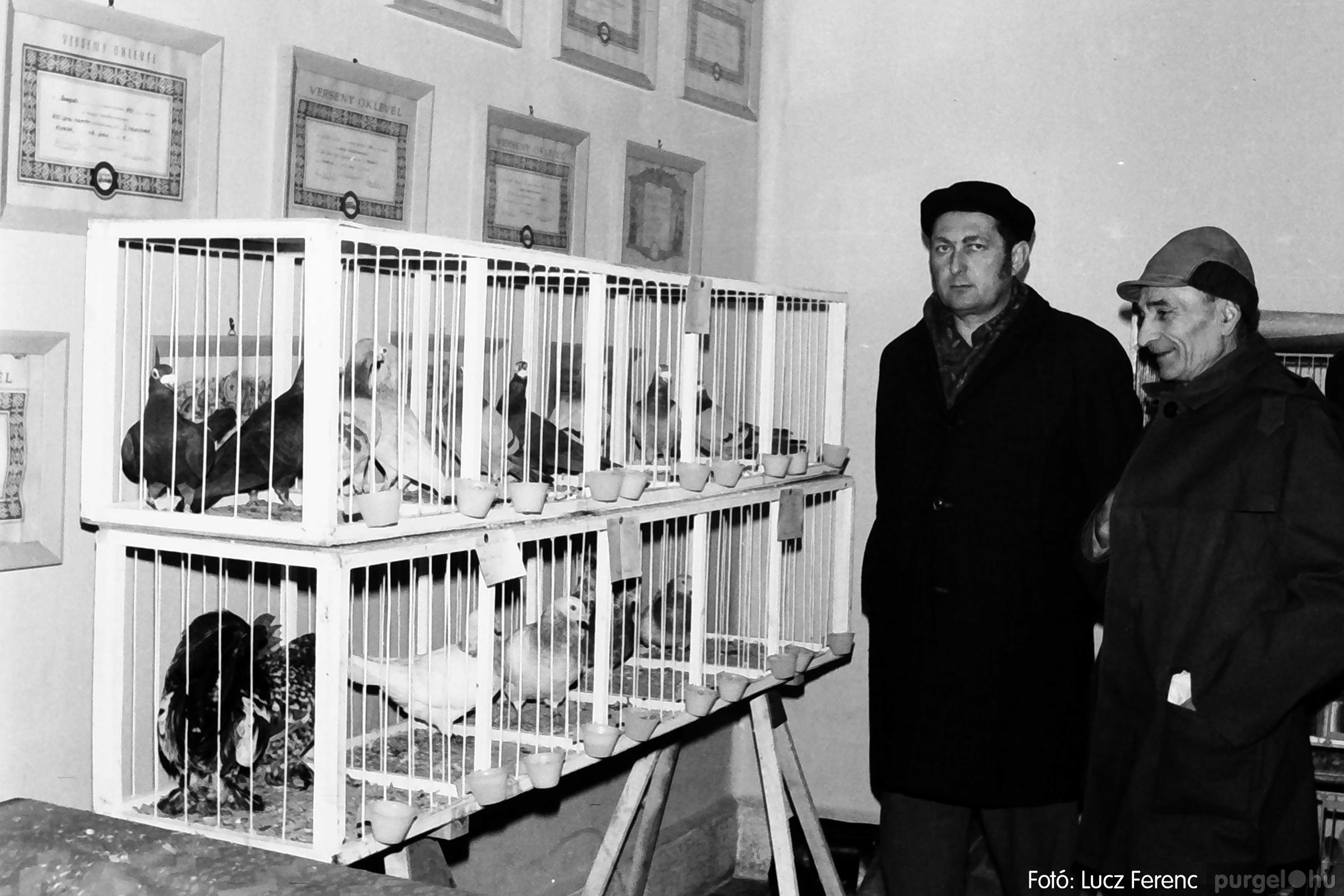 074. 1977. Kisállat kiállítás 005. - Fotó: Lucz Ferenc.jpg