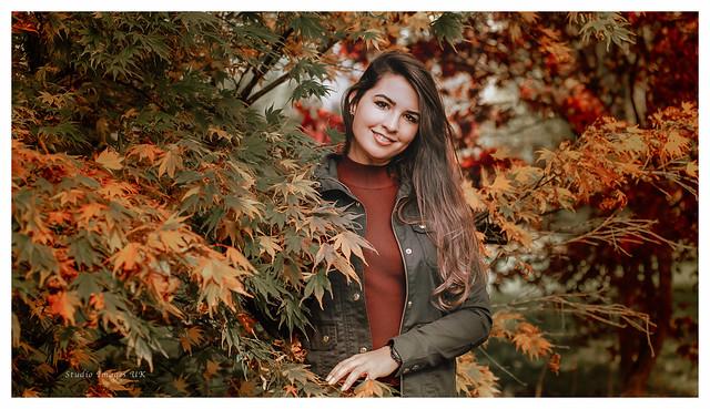 Westonbirt_Autumn_Colours-4