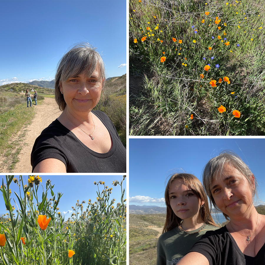 2021-wildflowers-in-Hemet-7