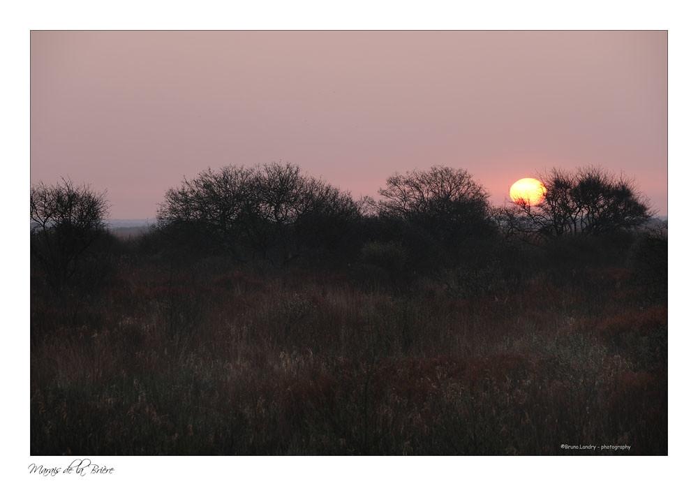 Soleil timide ce matin, mais belles couleurs nature