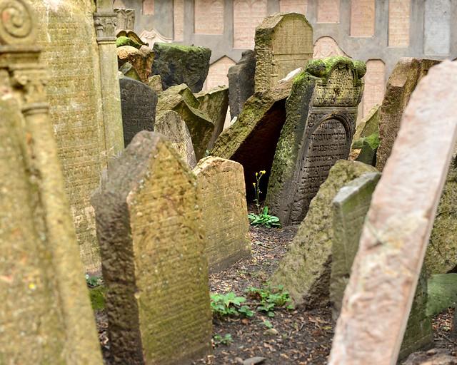 Fotografía del cementerio judío de Praga
