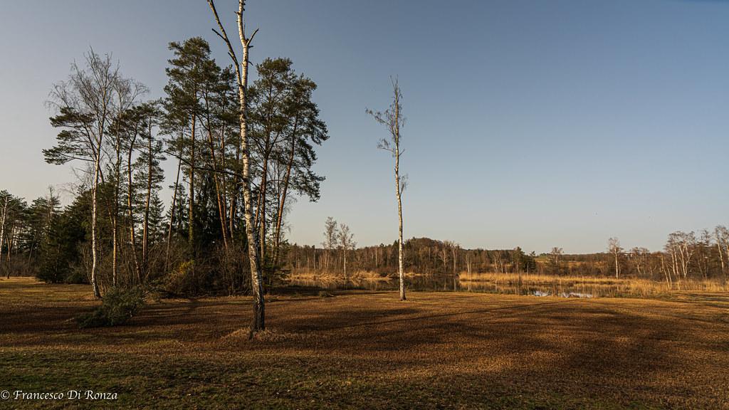landscape Husemersee .)2102/6843-4