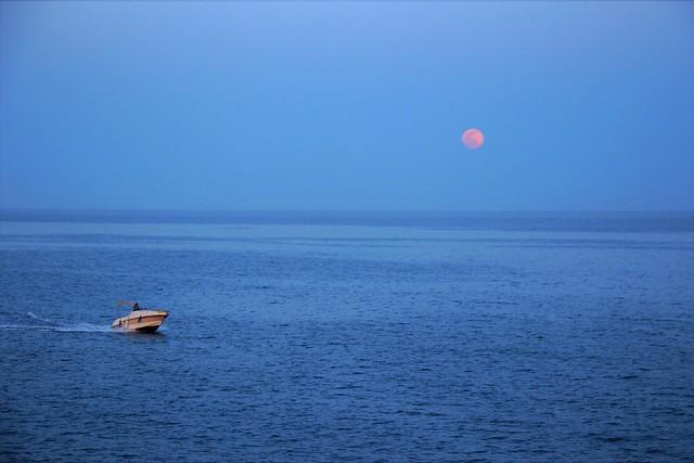 Lluna plena al fons