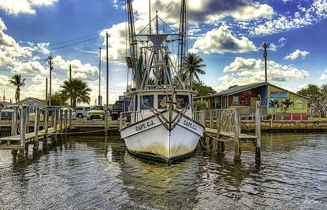 Capt. C.J., Matlacha, Florida