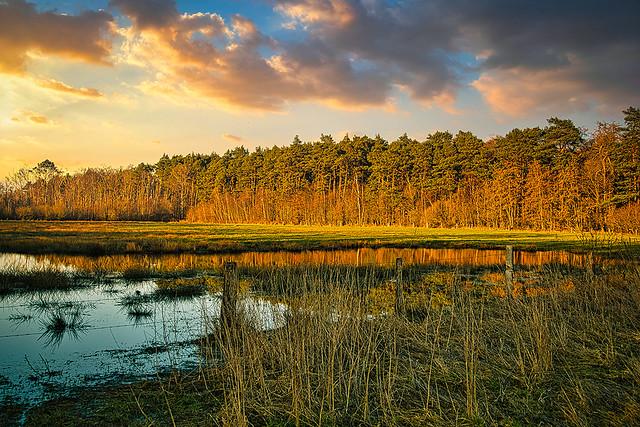Venngebiete im Münsterland