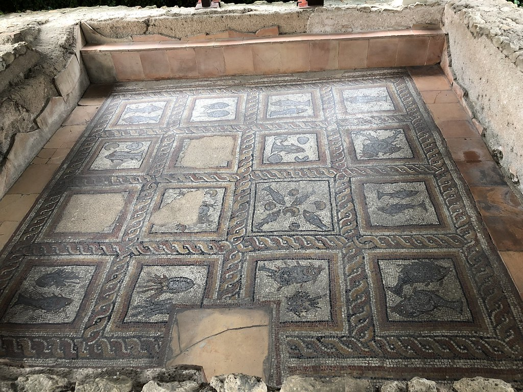 Mosaic Floor from the Bath Complex