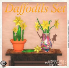 Daffodils Set : Exclusive groupgift @ Petit Chat for April Month