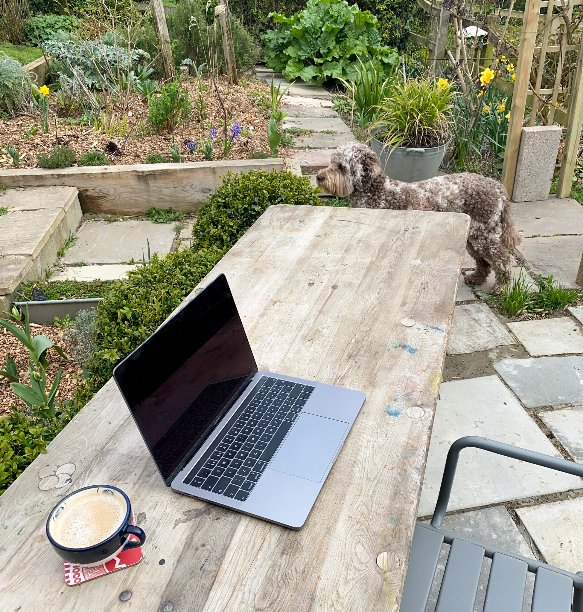 Working from the garden