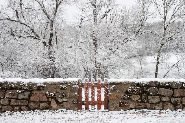 Néoux - première neige I