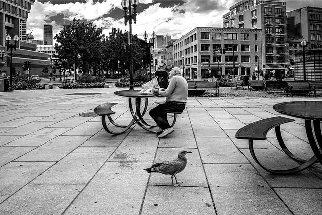 The bird & the Old Man
