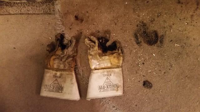 Burnt Gloves