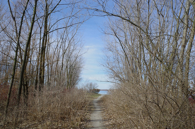 Leslie Spit. Path to the Lake