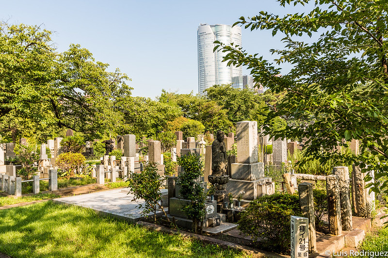 Cementerio de Aoyama, con la torre Mori de Roppongi al fondo