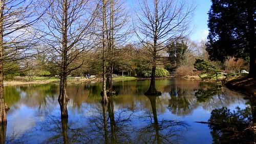 schleswigholstein arboretum ellerhoop thiesen see lake landschaft landscape natur nature ivlys