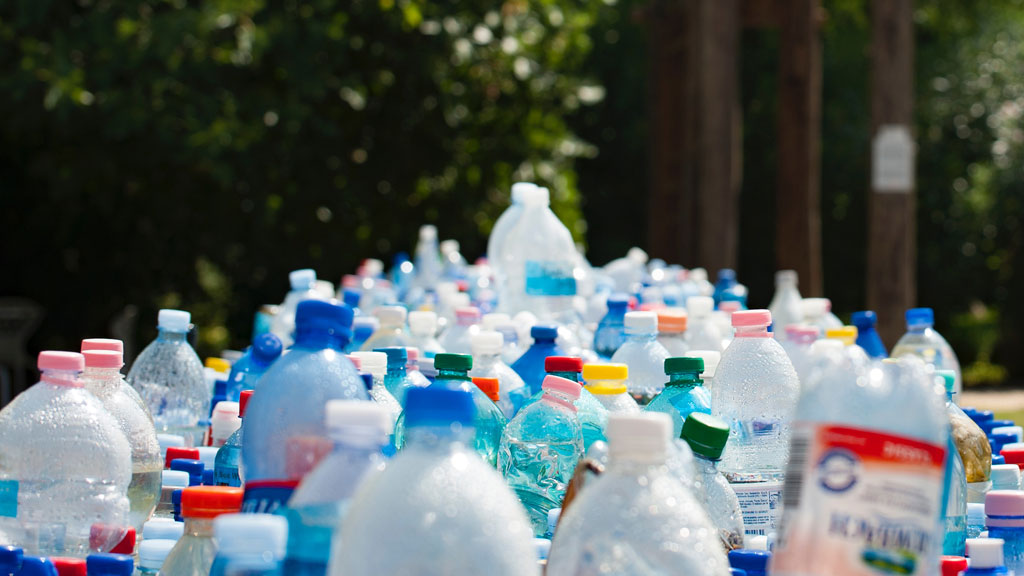 A collection of used plastic bottles
