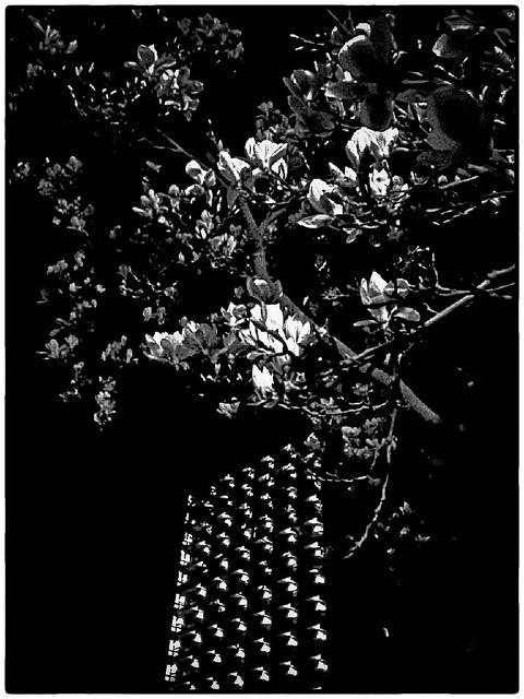Amstelveen at night # 002