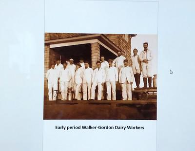 ElsieTheCow_6156-dairyWorkers