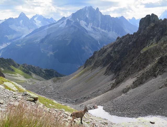 Alpy Francuskie / French Alps