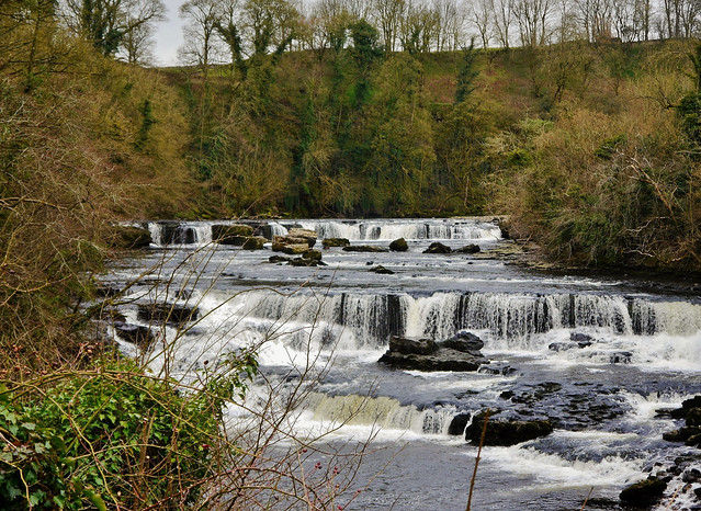 Aysgarth Falls (Yorkshire Dales National Park,) Leyburn