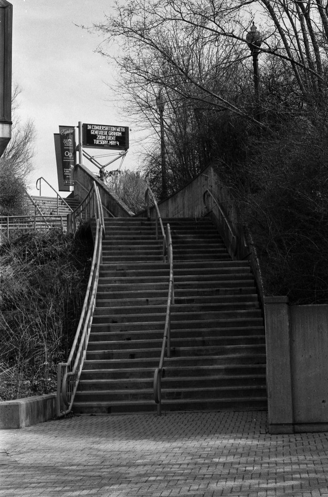Stairs By the OPL March 2021