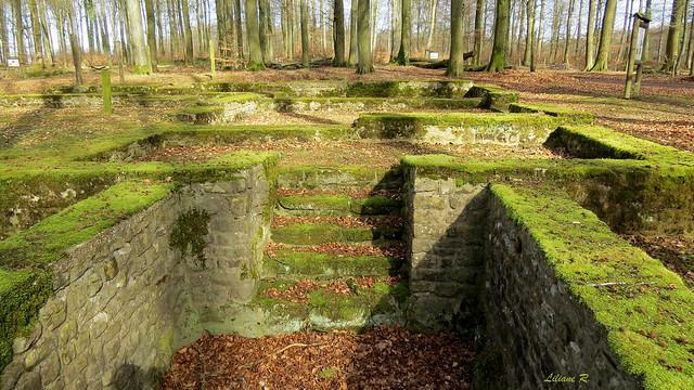 Villa gallo-romaine de Goeblange-Miecher