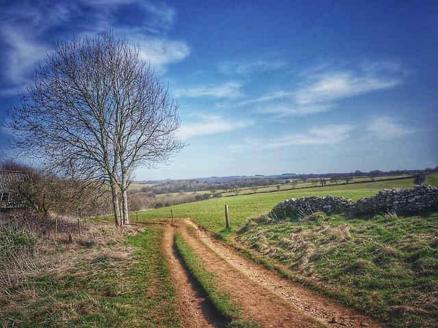 Cotswold vista