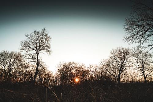 color colour dfw dfwmetroplex dallasfortworth evening fullframe landscape landscapes mckinney metroplex nature naturephotography northtexas sonyalpha sonyalphaa7rii sunset sunsets tamrone1728mmf28 texas usa unitedstates a7rii fav25 fav50 fav75 fav100