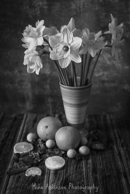 Daffodils & Oranges Still Life (Mono)