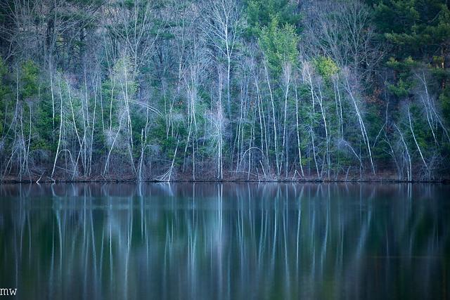 Nashoba Pond