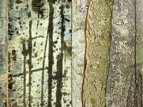 Diptych abstract of used construction forms together with tree bark with a bit of lichen