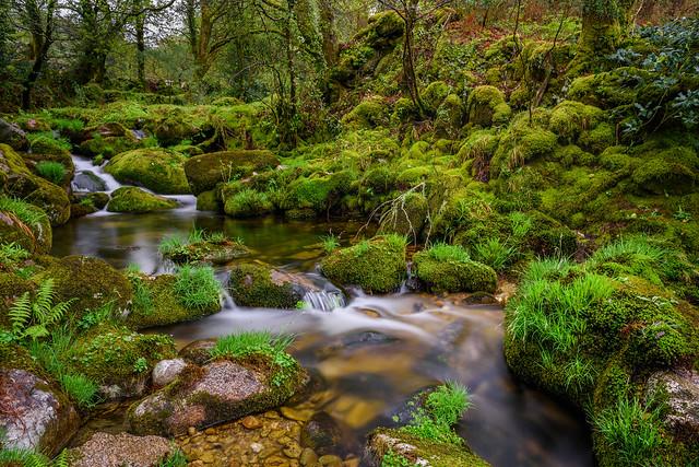 adeus ríos, adeus fontes, adeus regatos pequenos... [Explored]