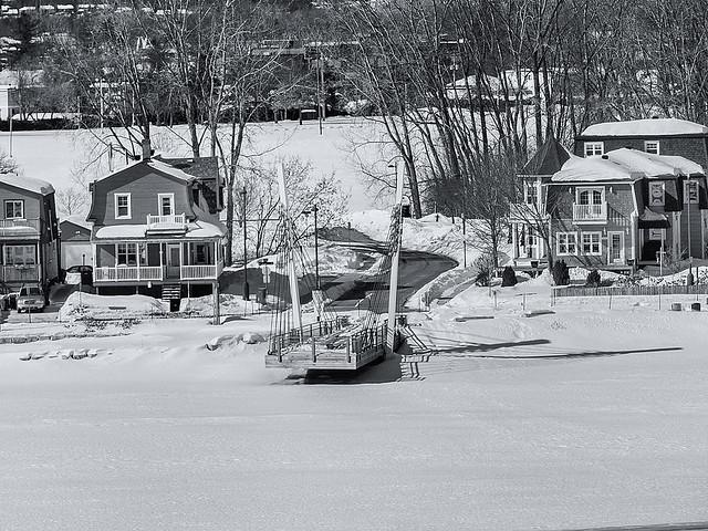 Winterscape 2021 ...(c)rebfoto