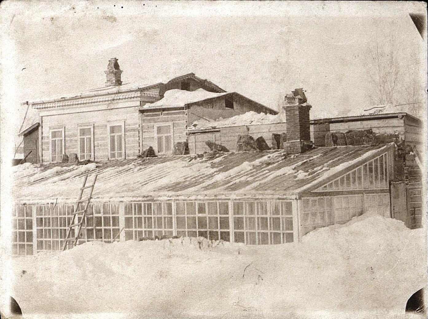 14. Оранжерея в саду Залесских. Декабрь 1909