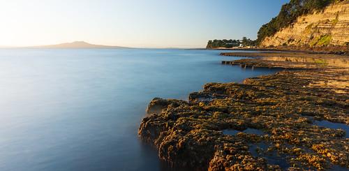 mairangibay auckland rangitoto waitemata cliffs beach beacheslandscapes beautyofwater dawn sunrise landscape seascape rocks seaweed puddles
